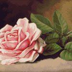Goblen - Trandafir roz pe masă