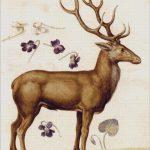 Goblen - Studiu după natură