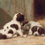Goblen - Căţeluşi St. Bernard